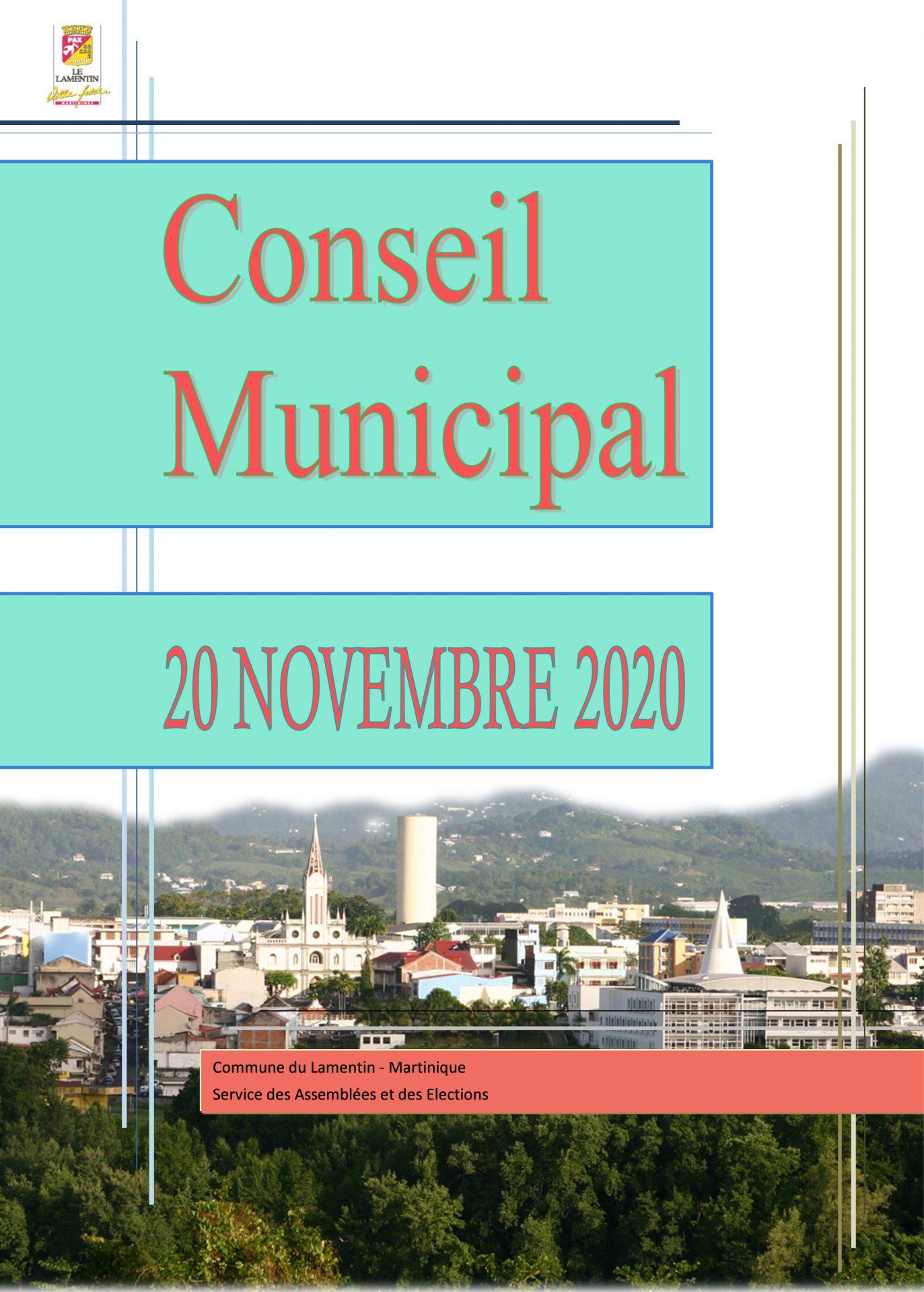 Le Conseil Municipal du 20 novembre est en ligne