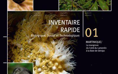 IBR : un ouvrage pour découvrir la mangrove